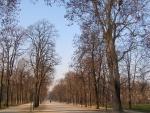 Parco del Palazzo Ducale